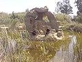 Africano bark - panoramio.jpg