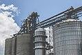 Agriculture Grain Elevator - Highway 7, Appleton, Minnesota (34686321604).jpg