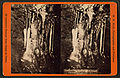 Alabaster candles, Manitou Grand Caverns, by W. E. Hook 2.jpg