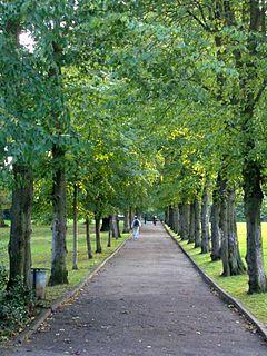 Alexandra Park, London park in Haringey, London