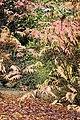 Americká zahrada - Chudenice - Okres Klatovy. (014).jpg