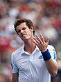 Andy Murray Why (1).jpg