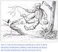 Angelo Agostini - S.t. (Hoje é o dia em que os moleques enforcam o judas...), 1888.jpg