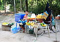 Angkor Wat fruit vendor (6042527985).jpg