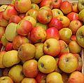 Apfel Goldparmäne 02 (fcm).jpg