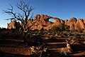 Arches National Park, Utah (Devils Garden Area) (3458779614).jpg