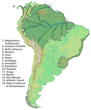 South America's areas of endemism; separated largely by major rivers.