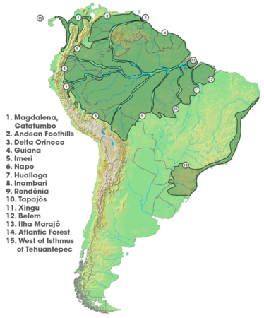 Areas of Endemism (South America).png