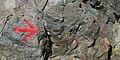 Argentina - Bariloche trekking 110 - trail markers (6797996657).jpg