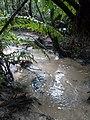 Arroios...rios guris.jpg