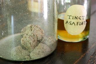Asafoetida - Asafoetida in a jar