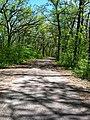 Astico Park - panoramio.jpg