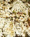 Athos eremiten axb01.jpg