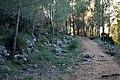 Atzeneta. Ombria del Benicadell. SL-CV 118 (2).jpg