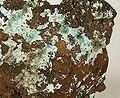 Aurichalcite-253996.jpg