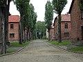 Auschwitz Birkenau German Nazi Concentration and Extermination Camp (1940-1945)-139600.jpg