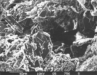 Authigenesis - Authigenic minerals in marine sediment
