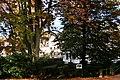 Autumn - an der Aubrücke - panoramio.jpg