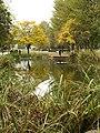 Autumnal Queen's Gardens - geograph.org.uk - 596681.jpg
