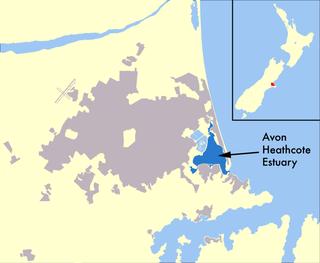 Avon Heathcote Estuary estuary