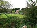 Ayranbrau Kennels, Bankhouse, Pudsey - geograph.org.uk - 943367.jpg