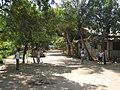 Bagan 25.jpg