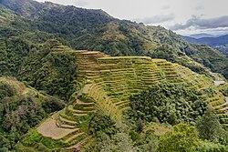 Banaue Philippines Banaue-Rice-Terraces-01.jpg