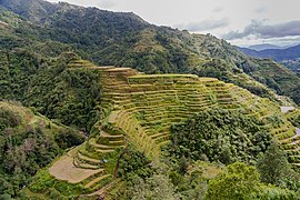 Banaue Philippines Banaue-Rice-Terraces-01.jpg