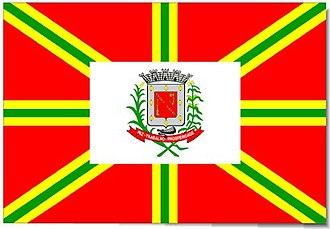 Frutal - Image: Bandeira Frutal