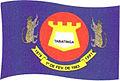 Bandeira Tabatinga AM.jpg