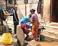 Bandipur P1050038 (3373092726).jpg