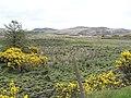 Barleymore Townland - geograph.org.uk - 177844.jpg
