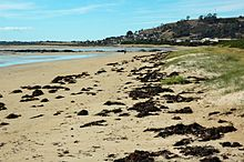 Beach Municipal Federal Credit Union Virginia Beach Va