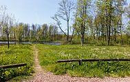 Beekdal Linde Bekhofplas. Een waardevol natuurterrein van Staatsbosbeheer In de provincie Friesland 01.jpg