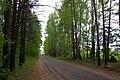 Belarus, Naroch - panoramio (96).jpg