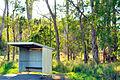 Belli Park Sunshine Coast Queensland Australia (2).jpg
