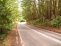 Bends for half a mile - geograph.org.uk - 42290.jpg