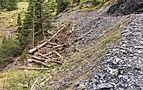 Bergtocht van Tschiertschen (1350 meter) via Ruchtobel richting Ochsenalp 22.jpg