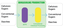 Biogasoline Production Process