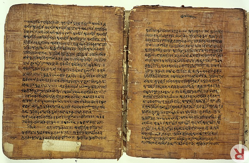 File:Birch bark MS from Kashmir of the Rupavatra Wellcome L0032691.jpg
