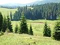 Birkanyáj a Ponoron - panoramio.jpg