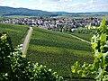 Blick Richtung Cleebronn - panoramio.jpg