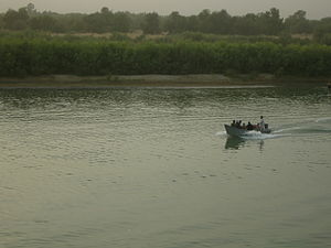 Lashkargah - Boat riding on the Helmand River. The forest is located on the other side.