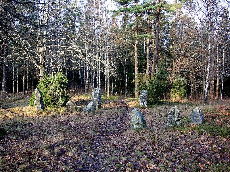 Järnåldersgrav vid Bergaholm ligger innanför reservatets gränser.