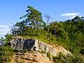 Bosc i roques a la Quar - panoramio.jpg