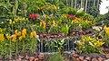 Botanical Garden Singapore (38272291285).jpg