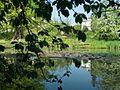 Botanical garden Krakow (2006-05-13) 06.jpg