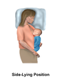 Breastfeeding - Side-Lying Position.png