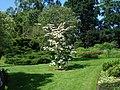 Bressingham Steam and Gardens 08.jpg