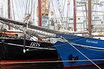 Brest 2012 Iris.jpg